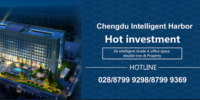 Chengdu Intelligent Information Port Office